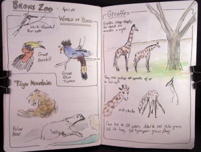 070424-bronx-zoo-1-500.jpg