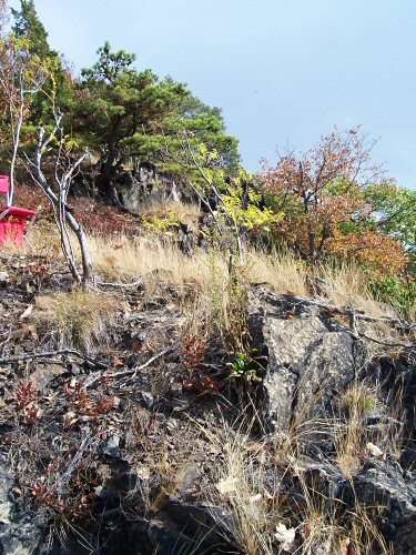 071015-west-tower-uphill2-500v.jpg