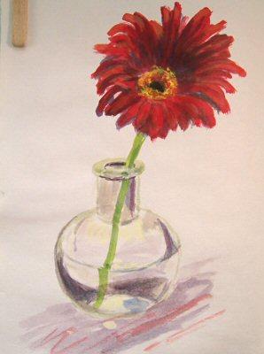 071017-red-gerbera-daisy-400.jpg