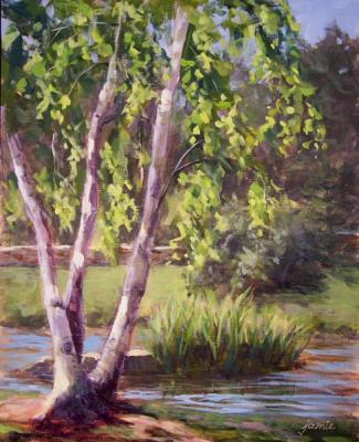 080702-birch-tree-by-the-pond-10x8-done-600