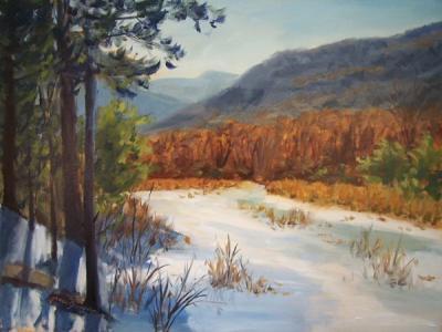 090227-kaaterskill-clove-beaver-pond-600