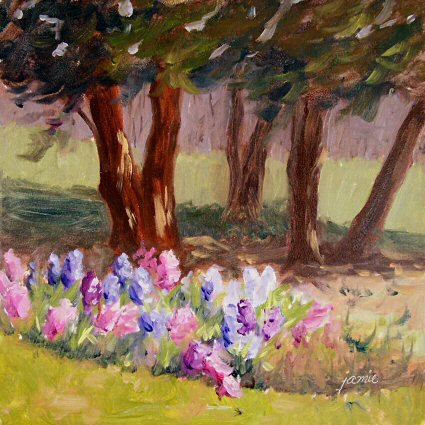 090416-first-blooms-6x6-425dklosat