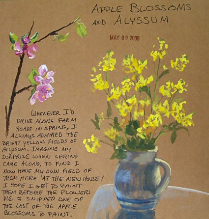 090509-apple-blossoms-and-alyssum-sketch-425