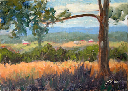 110714-Distant-Farms-from-Olana-5x7-450