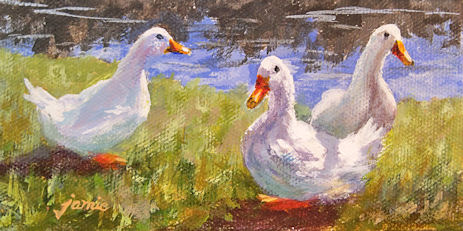 111120-Quackers-450