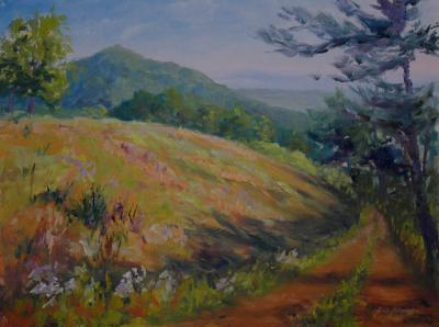120907-Hillside-Colors-12x16-Madj